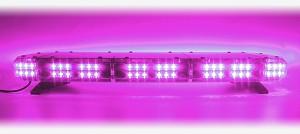 FUNERAL DSS LIGHT BAR